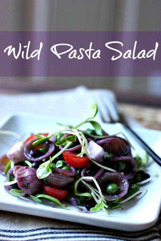 Pasta Salad with Wild Blueberries