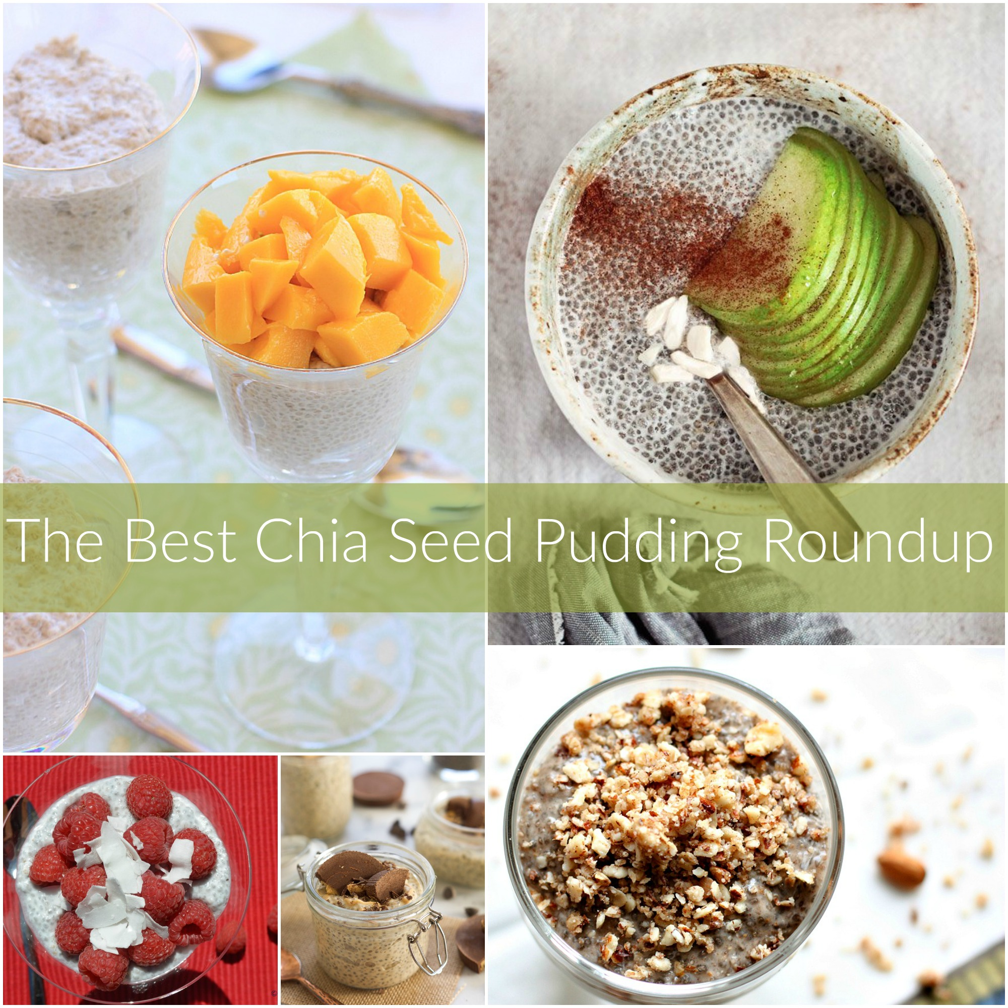 The best chia seed pudding roundup. Healthy recipes for snacks or on the go breakfast!